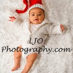 LJO Photography-Christmas-Photos-1173 b logo