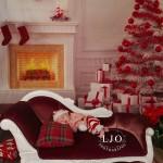 LJO Photography-Smithtown-Commack-Hauppauge-Nesconset-Lindenhurst-Babylon-Islip-Brentwood-oakdale-Great-Neck-Roslyn-Garden City-Syosset-Family-9587 logo