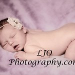 LJO Photography-newborn-8939 b hot F che loho