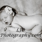LJO Photography-newborn-8941 b logo hf