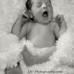 LJO Photography newborn-2616 b vit angel rich bw logo small