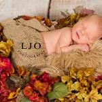 LJO Photography-Smithtown-Commack-Hauppauge-Nesconset-Lindenhurst-Babylon-Islip-Brentwood-oakdale-Great-Neck-Roslyn-Garden City-Syosset-engagement-weddings- -7396 logo