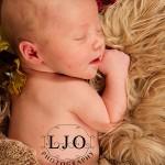 LJO Photography-Smithtown-Commack-Hauppauge-Nesconset-Lindenhurst-Babylon-Islip-Brentwood-oakdale-Great-Neck-Roslyn-Garden City-Syosset-engagement-weddings- -7485 logo