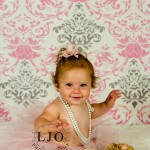 LJO Photography-Smithtown-Commack-Hauppauge-Nesconset-Lindenhurst-Babylon-Islip-1st-birthday-photos-smash-the-cake-0271 logo