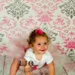 LJO Photography-Smithtown-Commack-Hauppauge-Nesconset-Lindenhurst-Babylon-Islip-1st-birthday-photos-smash-the-cake-0346 logo