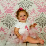 LJO Photography-Smithtown-Commack-Hauppauge-Nesconset-Lindenhurst-Babylon-Islip-1st-birthday-photos-smash-the-cake-0369 logo