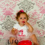 LJO Photography-Smithtown-Commack-Hauppauge-Nesconset-Lindenhurst-Babylon-Islip-1st-birthday-photos-smash-the-cake-0373 logo