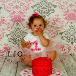 LJO Photography-Smithtown-Commack-Hauppauge-Nesconset-Lindenhurst-Babylon-Islip-1st-birthday-photos-smash-the-cake-0382 logo