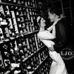 LJO Photography-Smithtown-Commack-Hauppauge-Nesconset-Lindenhurst-Babylon-Islip-Insignia-Steak-House-2-185 logo bs